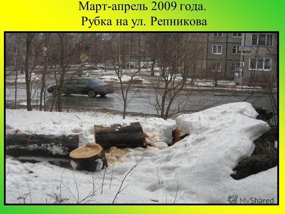 Март-апрель 2009 года. Рубка на ул. Репникова