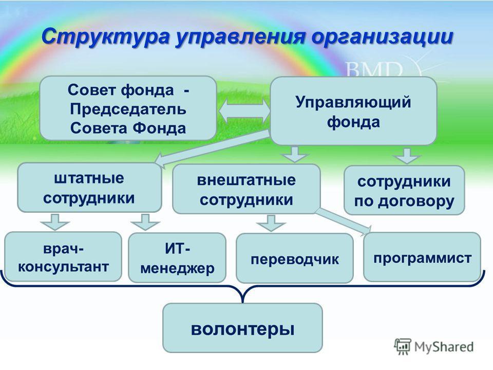 Структура управления организации штатные сотрудники