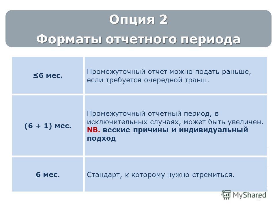 5 Опция 2 Форматы отчетного периода 6 мес. Промежуточный отчет можно подать раньше, если требуется очередной транш. (6 + 1) мес. Промежуточный отчетный период, в исключительных случаях, может быть увеличен. NB. веские причины и индивидуальный подход