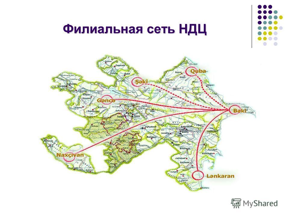Филиальная сеть НДЦ