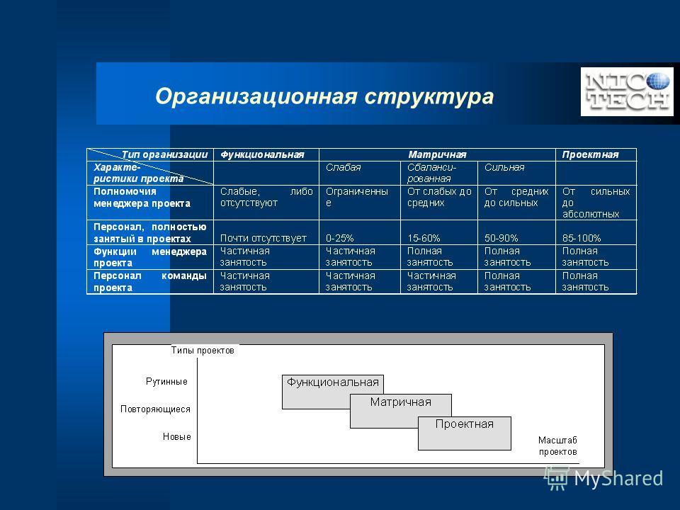 Организационная структура