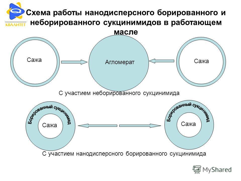 Схема работы нанодисперсного борированного и неборированного сукцинимидов в работающем масле Сажа Агломерат С участием неборированного сукцинимида Сажа С участием нанодисперсного борированного сукцинимида