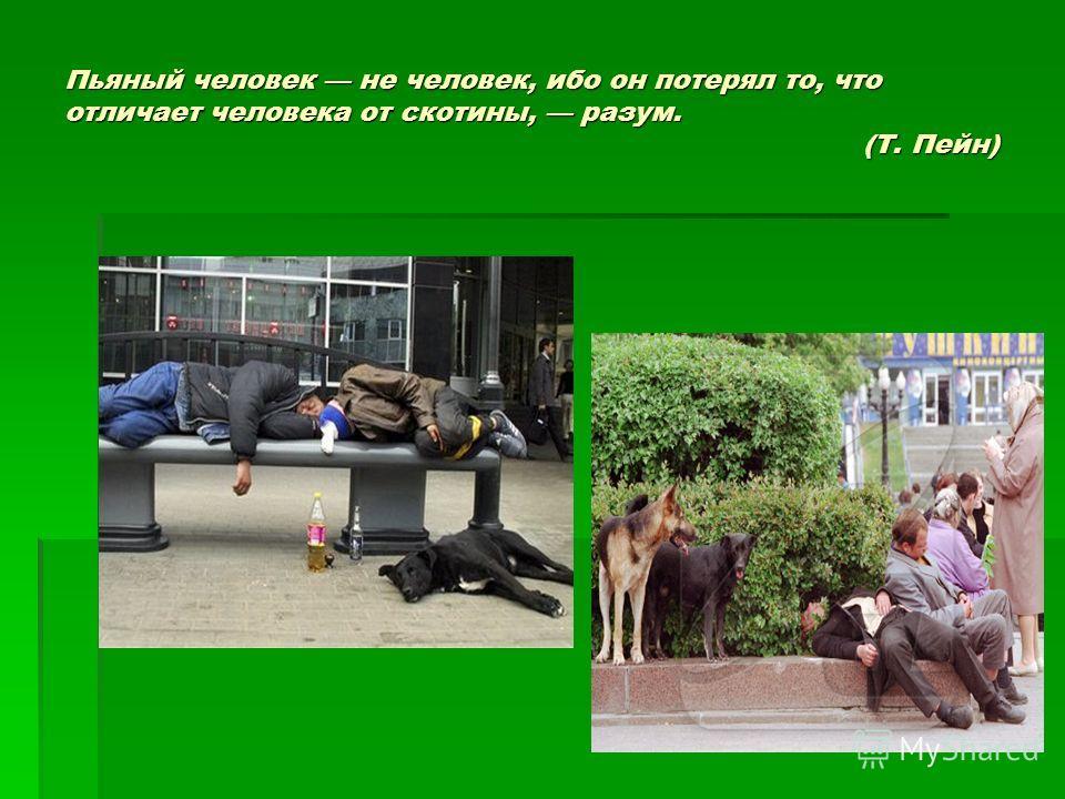 Пьяный человек не человек, ибо он потерял то, что отличает человека от скотины, разум. (Т. Пейн)