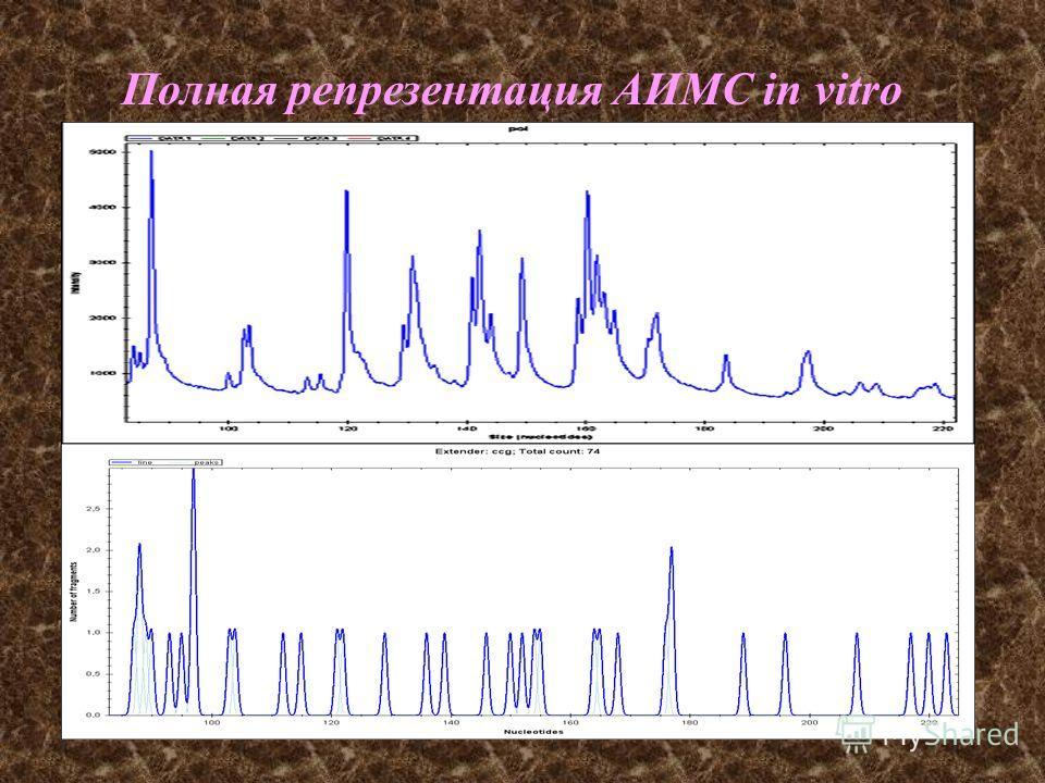 Полная репрезентация АИМС in vitro и in silico