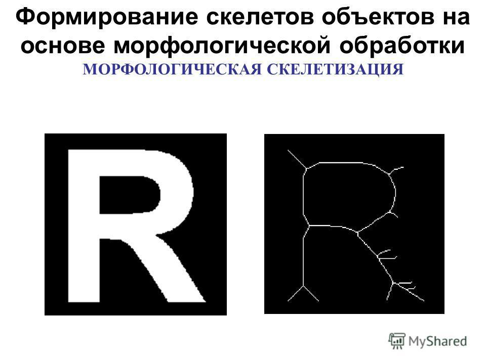 Формирование скелетов объектов на основе морфологической обработки МОРФОЛОГИЧЕСКАЯ СКЕЛЕТИЗАЦИЯ