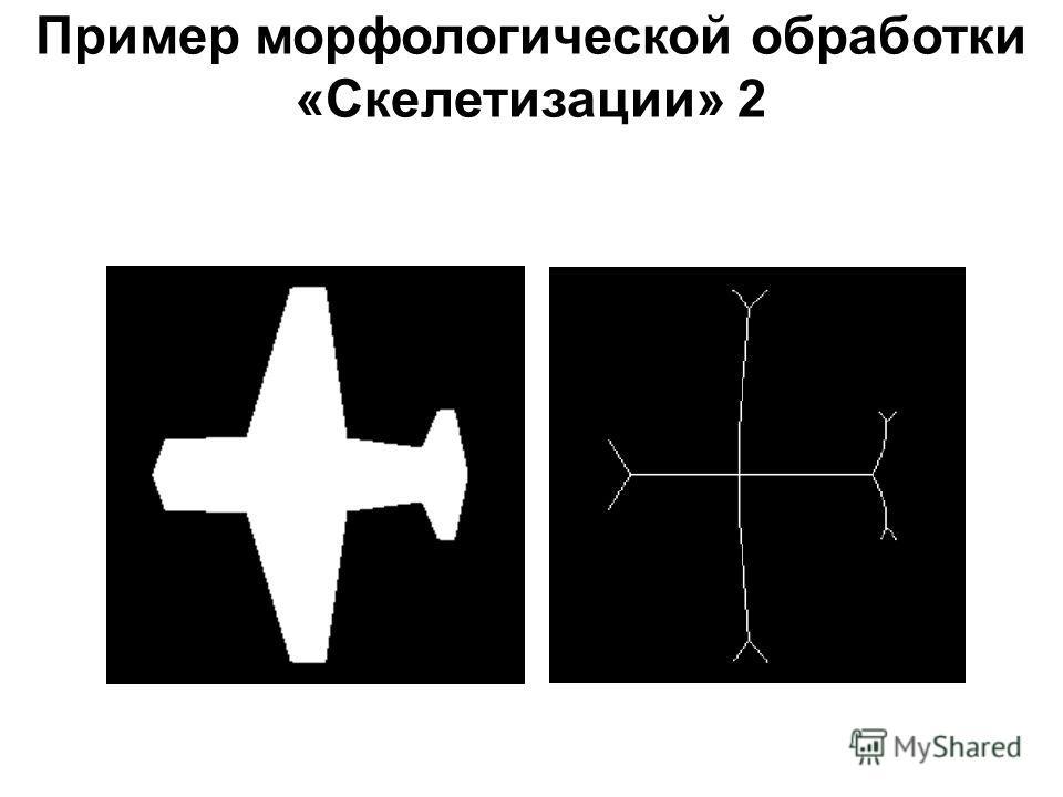 Пример морфологической обработки «Скелетизации» 2