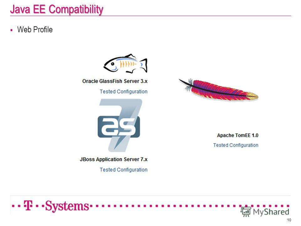 Java EE Compatibility Web Profile 10
