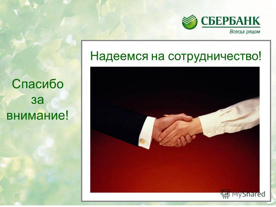 Спасибо за внимание! Надеемся на сотрудничество!