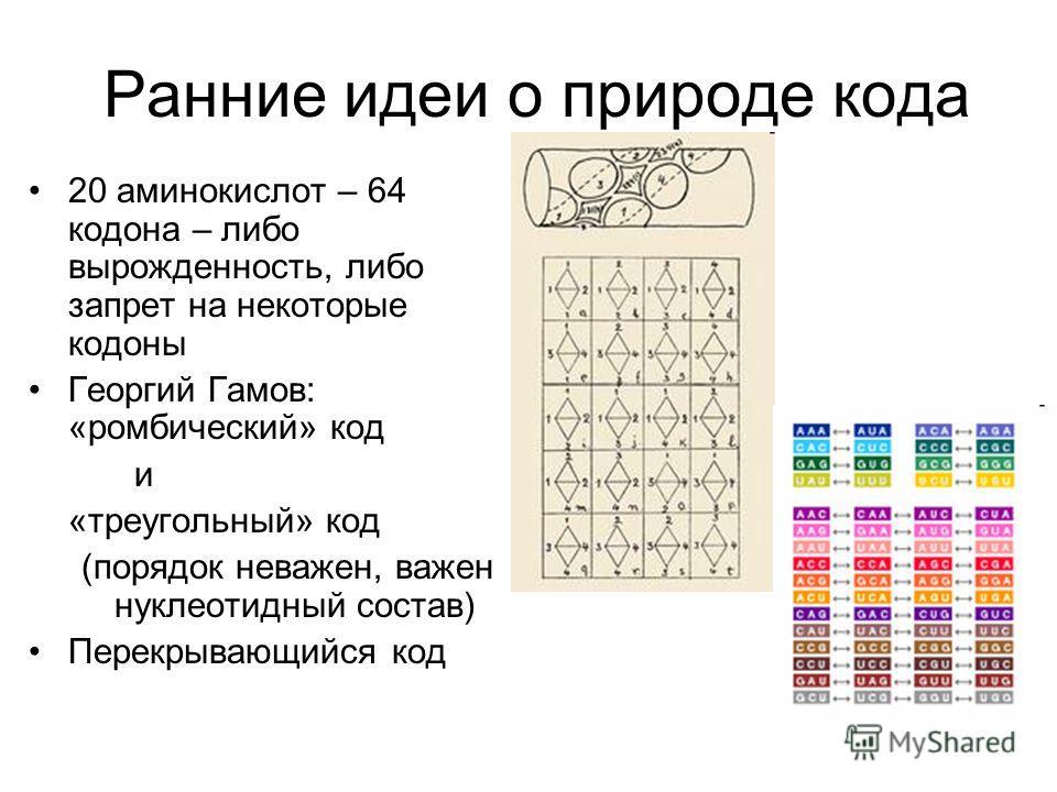 Ранние идеи о природе кода 20 аминокислот – 64 кодона – либо вырожденность, либо запрет на некоторые кодоны Георгий Гамов: «ромбический» код и «треугольный» код (порядок неважен, важен нуклеотидный состав) Перекрывающийся код