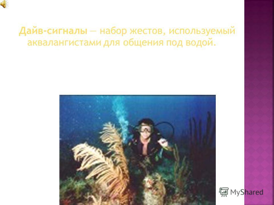 Дайв-сигналы набор жестов, используемый аквалангистами для общения под водой.