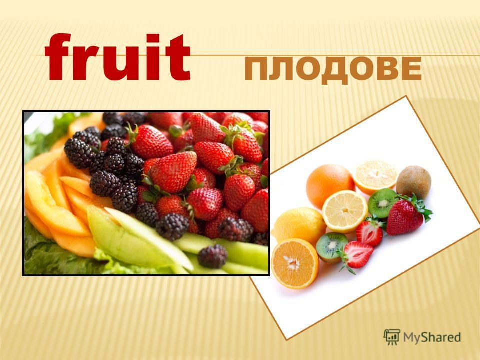 fruit ПЛОДОВЕ