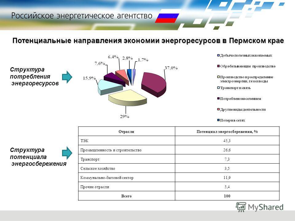 Потенциальные направления экономии энергоресурсов в Пермском крае Структура потребления энергоресурсов ОтраслиПотенциал энергосбережения, % ТЭК45,3 Промышленность и строительство26,6 Транспорт7,3 Сельское хозяйство3,5 Коммунально-бытовой сектор11,9 П