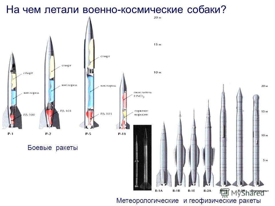 Метеорологические и геофизические ракеты На чем летали военно-космические собаки? Боевые ракеты