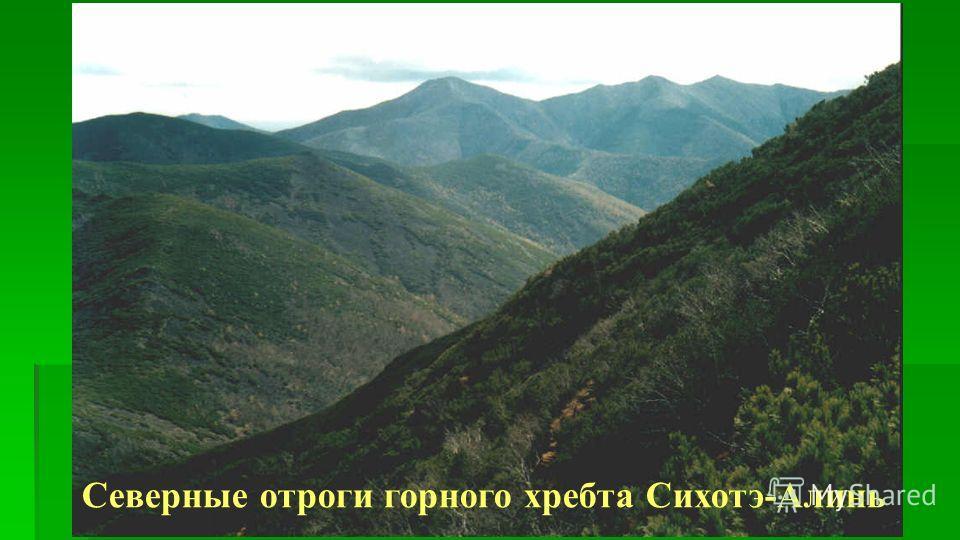 Северные отроги горного хребта Сихотэ-Алинь