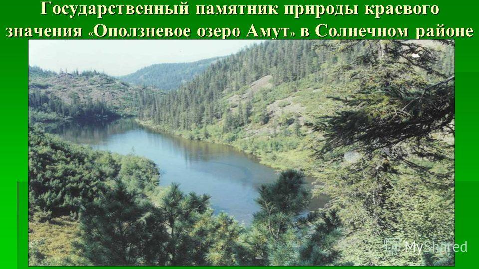 Государственный памятник природы краевого значения « Оползневое озеро Амут » в Солнечном районе