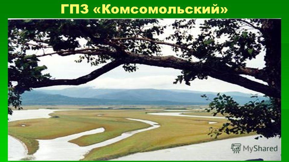 ГПЗ «Комсомольский»
