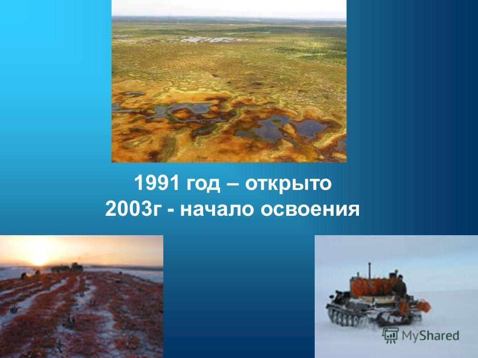1991 год – открыто 2003г - начало освоения