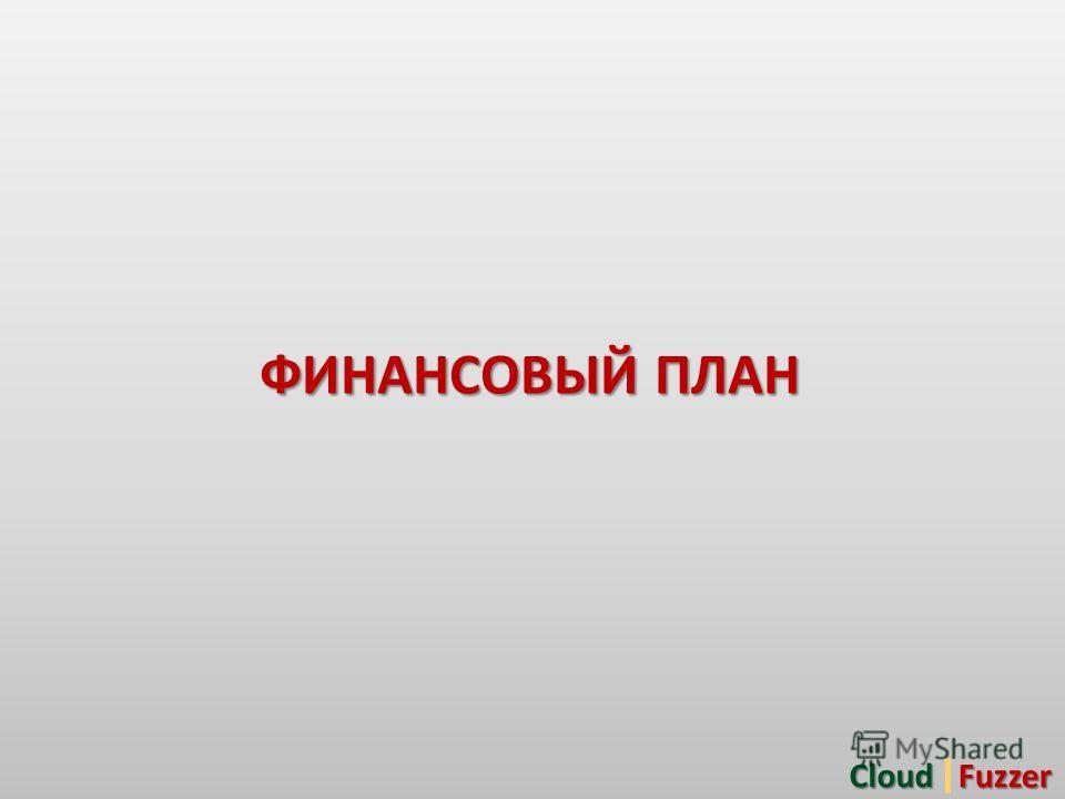 ФИНАНСОВЫЙ ПЛАН CloudFuzzer