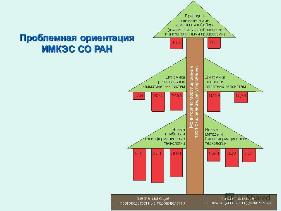 Проблемная ориентация ИМКЭС СО РАН