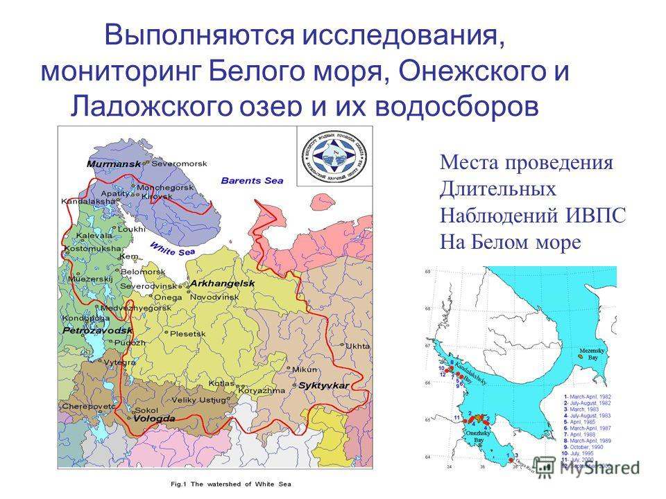 Выполняются исследования, мониторинг Белого моря, Онежского и Ладожского озер и их водосборов Места проведения Длительных Наблюдений ИВПС На Белом море