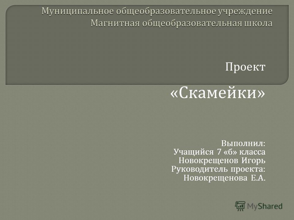Проект « Скамейки » Выполнил : Учащийся 7 « б » класса Новокрещенов Игорь Руководитель проекта : Новокрещенова Е. А.