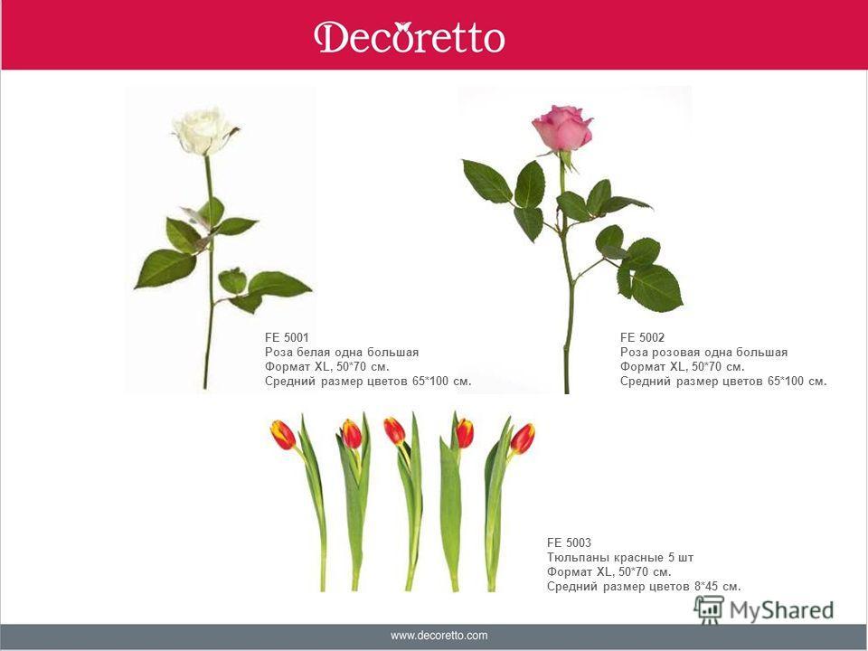 FE 5001 Роза белая одна большая Формат ХL, 50*70 см. Средний размер цветов 65*100 см. FE 5002 Роза розовая одна большая Формат ХL, 50*70 см. Средний размер цветов 65*100 см. FE 5003 Тюльпаны красные 5 шт Формат ХL, 50*70 см. Средний размер цветов 8*4