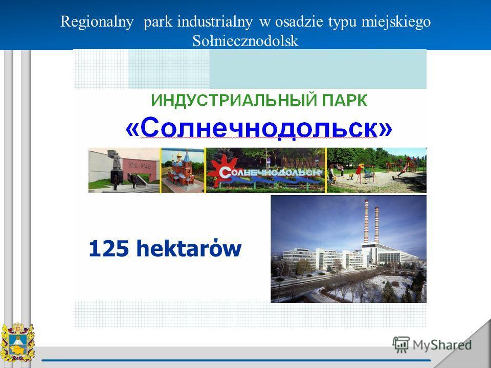 Regionalny park industrialny w osadzie typu miejskiego Sołniecznodolsk 125 hektarόw