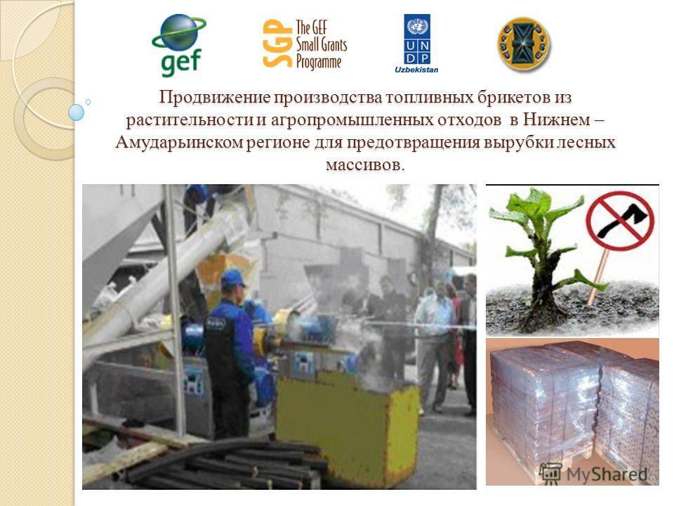 Продвижение производства топливных брикетов из растительности и агропромышленных отходов в Нижнем – Амударьинском регионе для предотвращения вырубки лесных массивов.