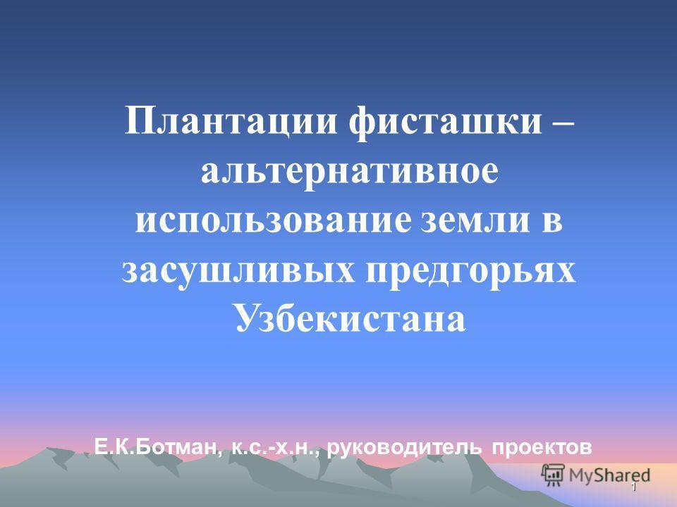 Е.К.Ботман, к.с.-х.н., руководитель проектов 1 Плантации фисташки – альтернативное использование земли в засушливых предгорьях Узбекистана