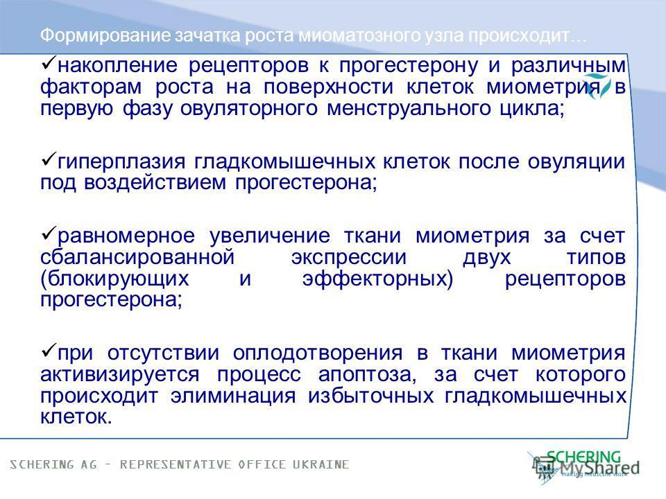 SCHERING AG – REPRESENTATIVE OFFICE UKRAINE Миома матки - это... Миома матки - моноклональный гормоночувствительный пролиферат (образование), состоящий из фенотипически измененных гладкомышечных клеток миометрия. Происхождение клетки предшественника