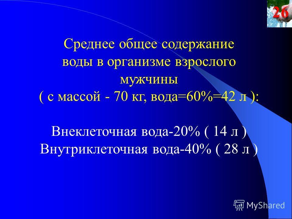 Среднее общее содержание воды в организме взрослого мужчины ( с массой - 70 кг, вода=60%=42 л ): Внеклеточная вода-20% ( 14 л ) Внутриклеточная вода-40% ( 28 л )26