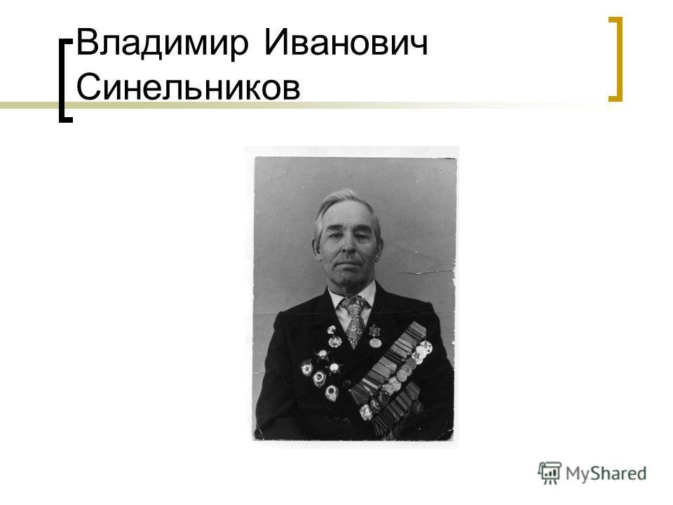 Владимир Иванович Синельников