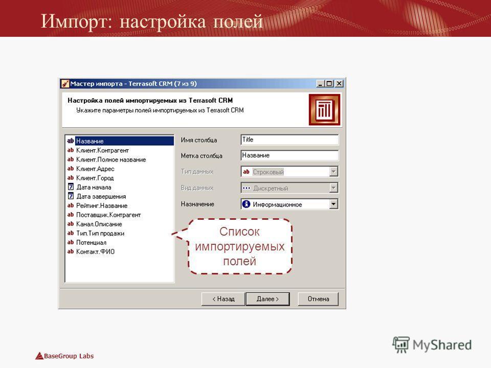 BaseGroup Labs Импорт: настройка полей Список импортируемых полей