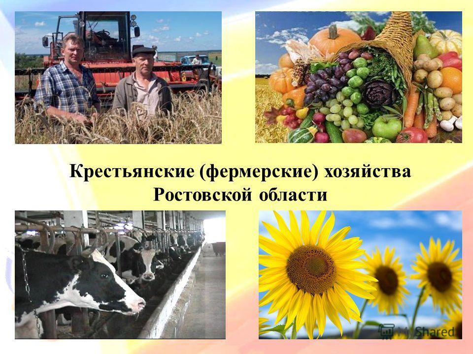 Крестьянские (фермерские) хозяйства Ростовской области