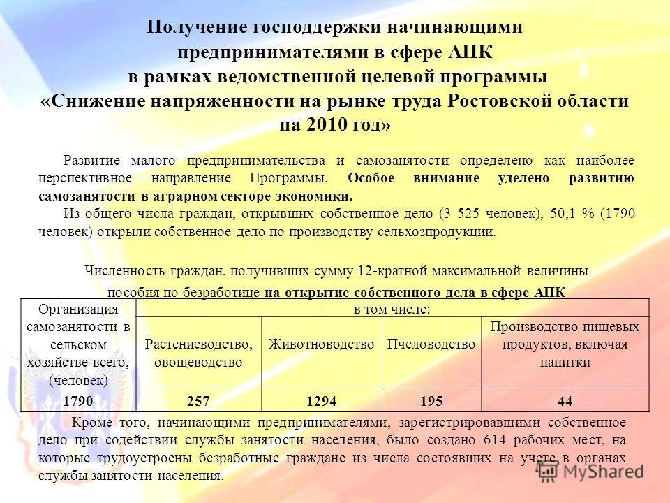 Получение господдержки начинающими предпринимателями в сфере АПК в рамках ведомственной целевой программы «Снижение напряженности на рынке труда Ростовской области на 2010 год» Развитие малого предпринимательства и самозанятости определено как наибол