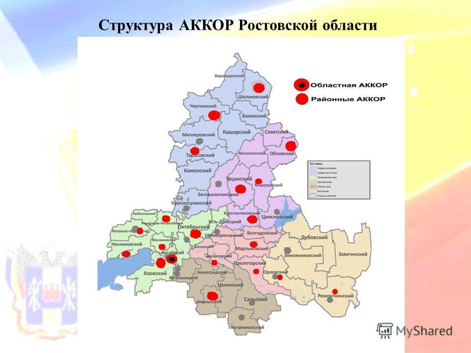 Структура АККОР Ростовской области