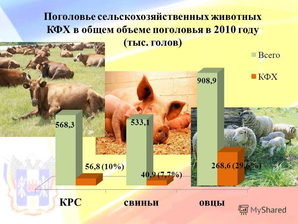 Поголовье сельскохозяйственных животных КФХ в общем объеме поголовья в 2010 году (тыс. голов)