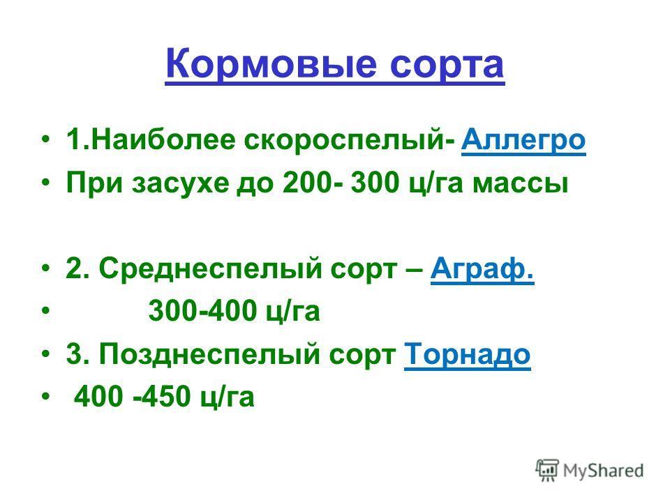 Кормовые сорта 1.Наиболее скороспелый- Аллегро При засухе до 200- 300 ц/га массы 2. Среднеспелый сорт – Аграф. 300-400 ц/га 3. Позднеспелый сорт Торнадо 400 -450 ц/га