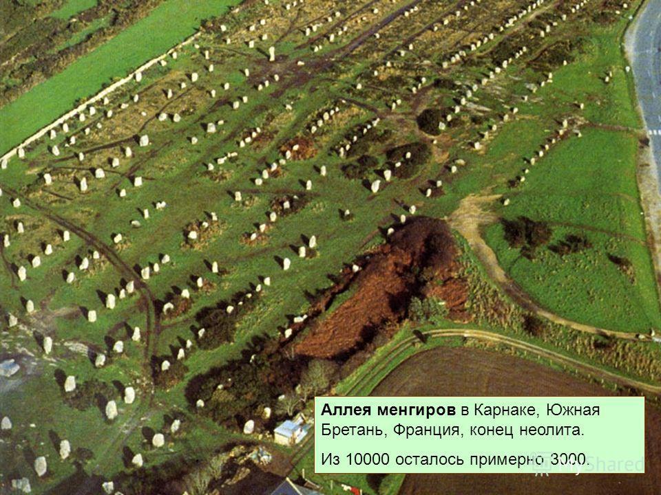 Аллея менгиров в Карнаке, Южная Бретань, Франция, конец неолита. Из 10000 осталось примерно 3000.