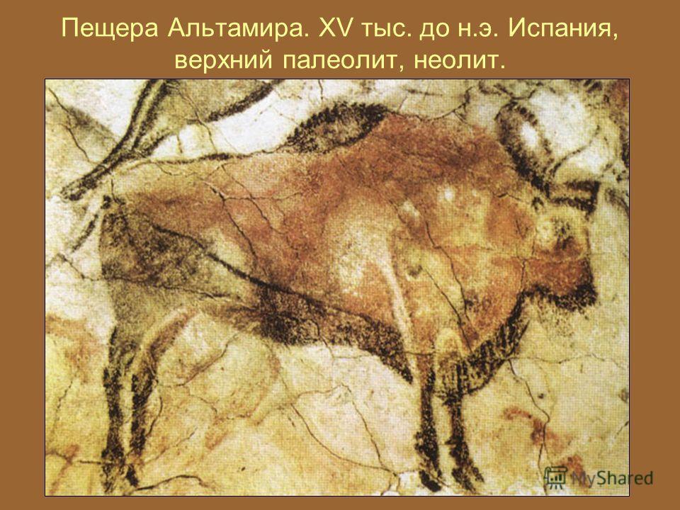 Пещера Альтамира. XV тыс. до н.э. Испания, верхний палеолит, неолит.