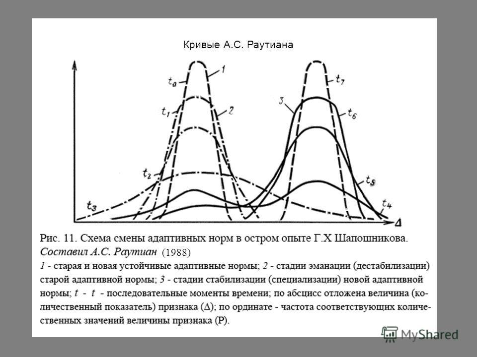 Кривые А.С. Раутиана (1988)