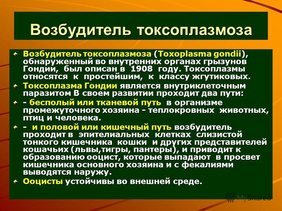 Возбудитель токсоплазмоза Возбудитель токсоплазмоза (Toxoplasma gondii), обнаруженный во внутренних органах грызунов Гондии, был описан в 1908 году. Токсоплазмы относятся к простейшим, к классу жгутиковых. Токсоплазма Гондии является внутриклеточным