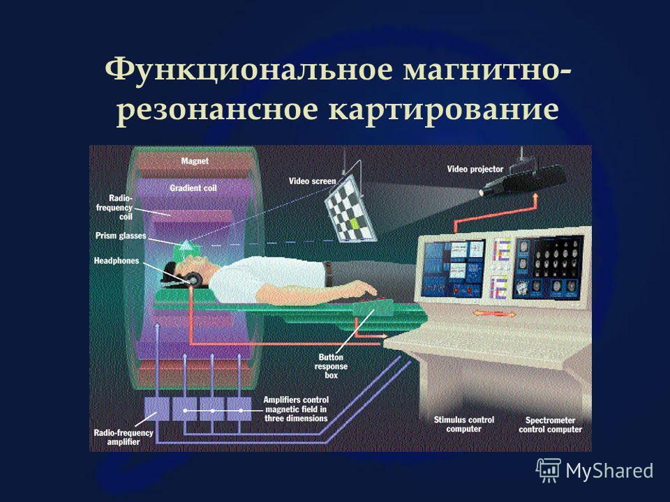 Функциональное магнитно- резонансное картирование