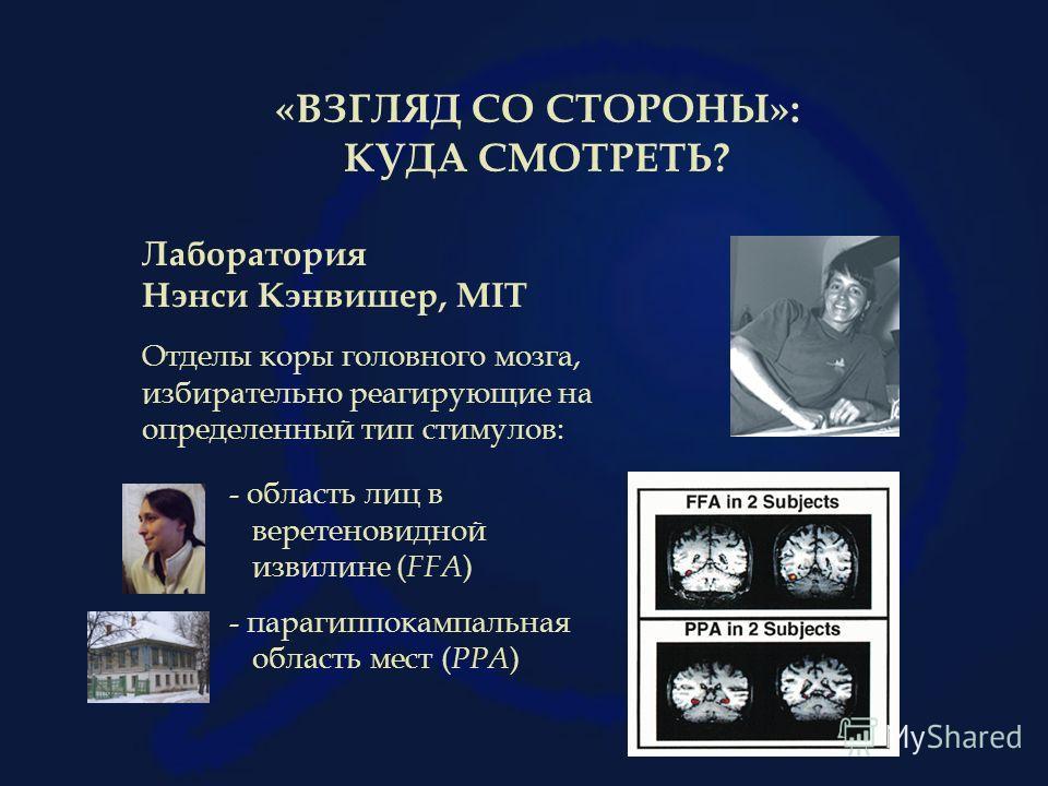 «ВЗГЛЯД СО СТОРОНЫ»: КУДА СМОТРЕТЬ? Лаборатория Нэнси Кэнвишер, MIT Отделы коры головного мозга, избирательно реагирующие на определенный тип стимулов: - область лиц в веретеновидной извилине ( FFA ) - парагиппокампальная область мест ( PPA )