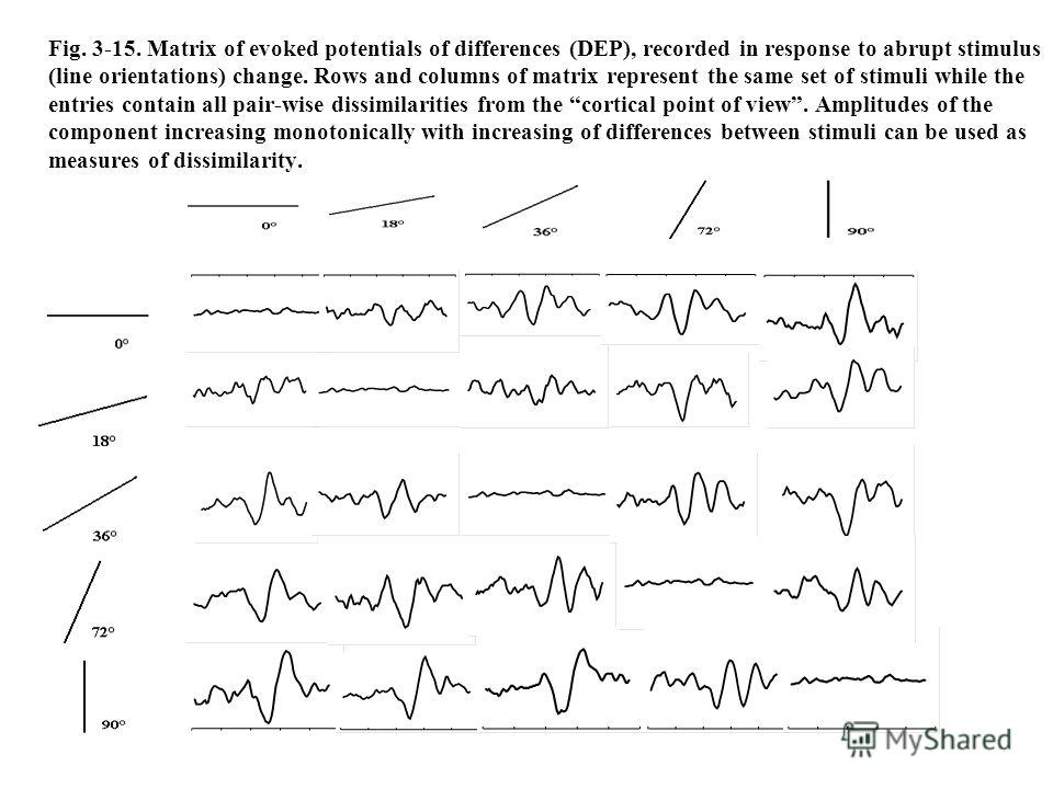 Fig. 3-15. Matrix of evoked potentials of differences (DEP), recorded in response to abrupt stimulus (line orientations) change. Rows and columns of matrix represent the same set of stimuli while the entries contain all pair-wise dissimilarities from