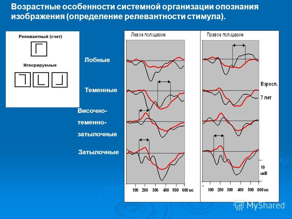 Возрастные особенности системной организации опознания изображения (определение релевантности стимула). Лобные Теменные Височно- теменно- затылочные Затылочные