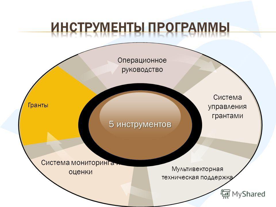 5 инструментов Система мониторинга и оценки Система управления грантами Мультивекторная техническая поддержка Операционное руководство Гранты