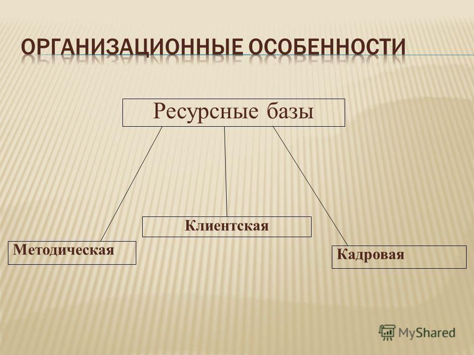 Ресурсные базы Методическая Клиентская Кадровая