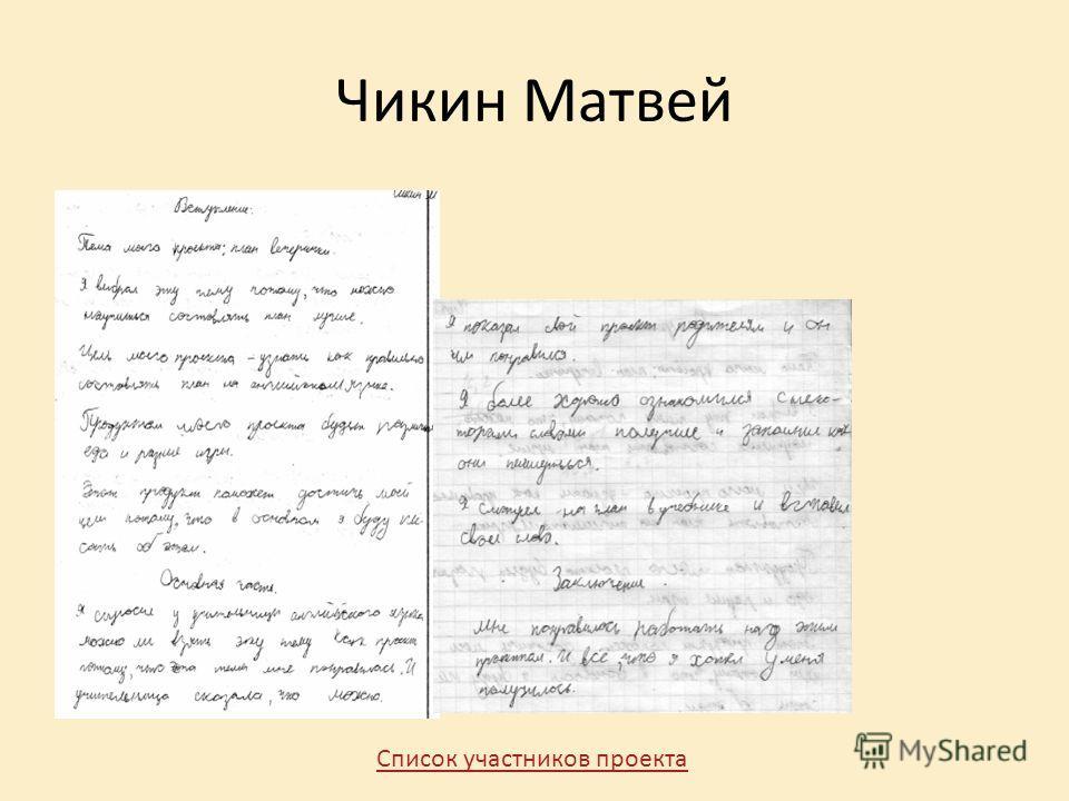 Чикин Матвей Список участников проекта