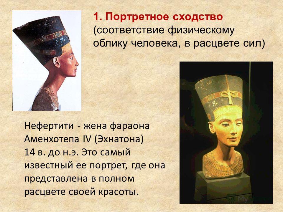 1. Портретное сходство (соответствие физическому облику человека, в расцвете сил) Нефертити - жена фараона Аменхотепа IV (Эхнатона) 14 в. до н.э. Это самый известный ее портрет, где она представлена в полном расцвете своей красоты.